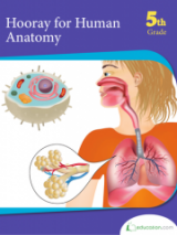 <h5>5th Grade Science Workbook</h5><p>This 5th Grade Science Workbook is printable. This anatomy workbook features many diagrams of the human body. </p>
