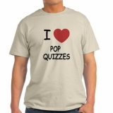 <h5>I Love Pop Quizzes T Shirt</h5><p>I Love Pop Quizzes T Shirt</p>